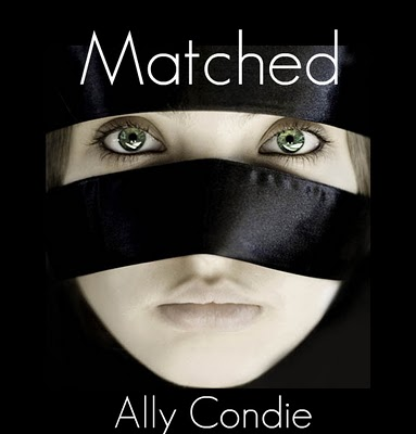 the1bookblog matched ally condie book cover fan art